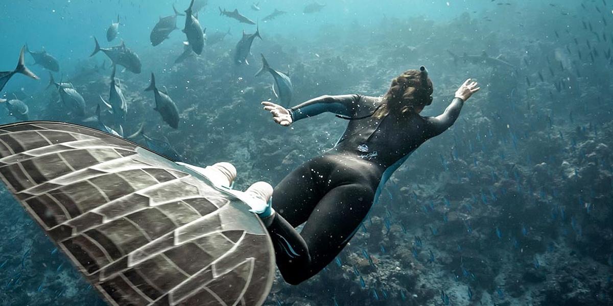 10 ข้อเท็จจริงที่น่าทึ่งเกี่ยวกับ Freediving