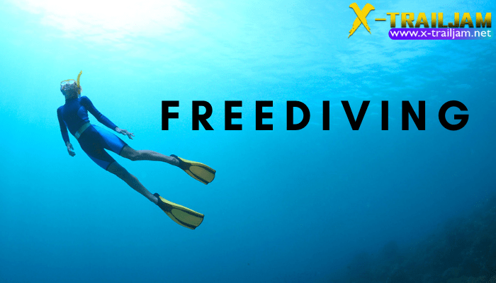 สิ่งที่คุณควรรู้เกี่ยวกับ Freediving สำหรับการ Freedive นับได้ว่าเป็นอีกหนึ่งรูปแบบของการดำน้ำที่มีเสน่ห์เฉพาะตัวไม่เบาเลยทีเดียว