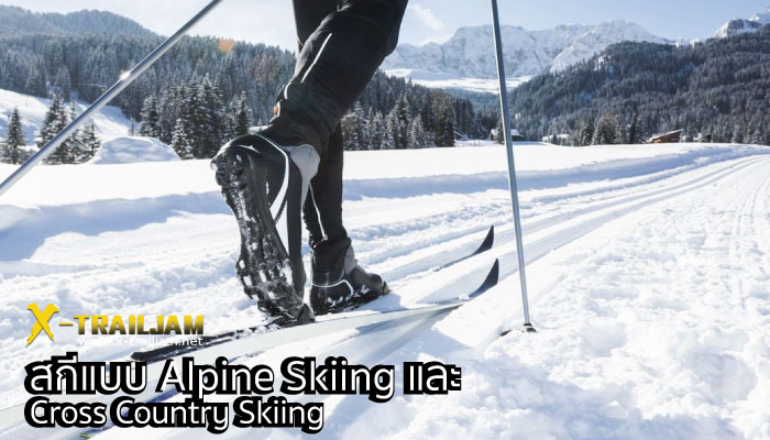 Alpine Skiing และ Cross Country Skiing